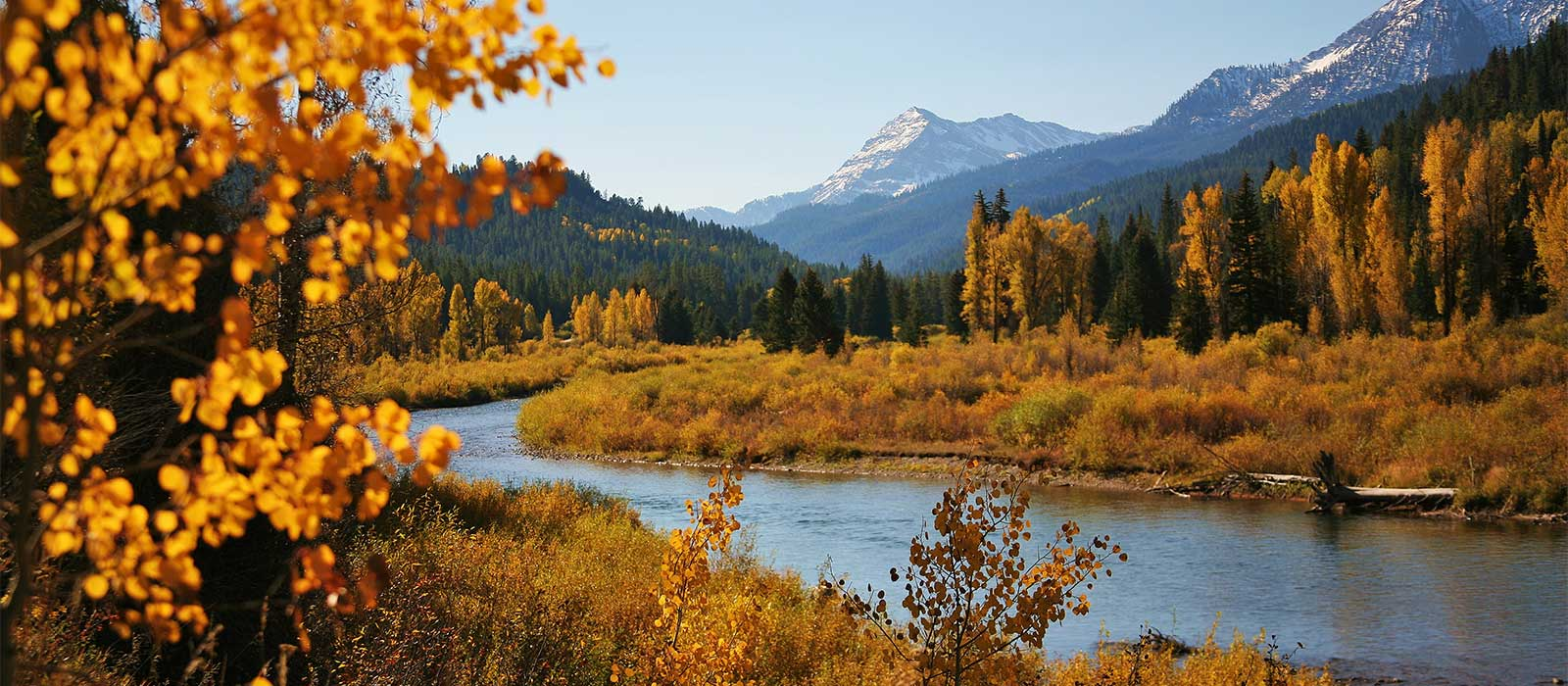 deadman ranch | fly fishing lodges in wyoming, Fly Fishing Bait