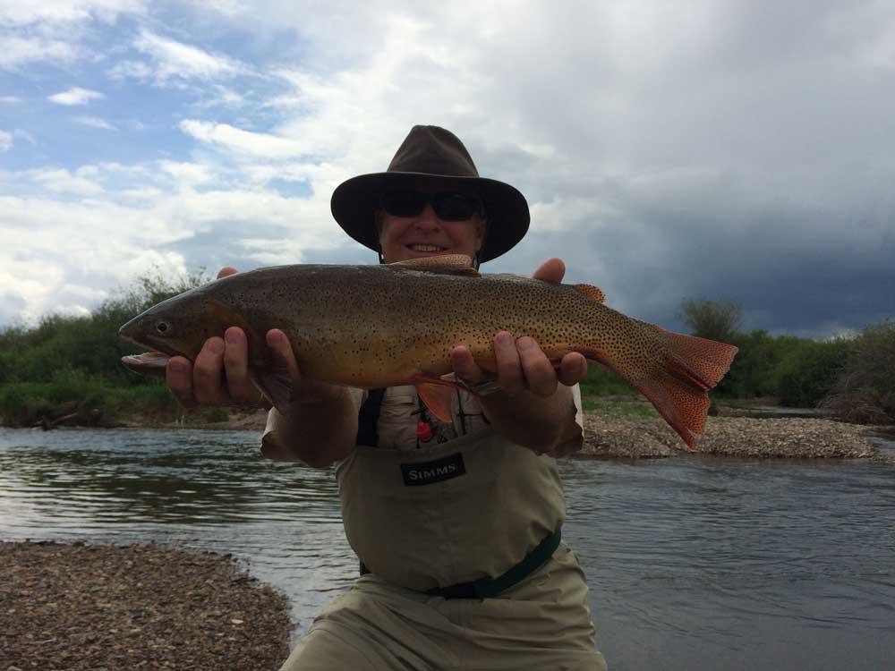 Jackson hole wyoming fly fishing photos feathered hook for Wyoming fishing license
