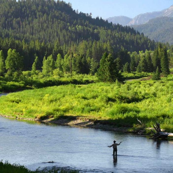 jackson-hole-fly-fishing-trips-header