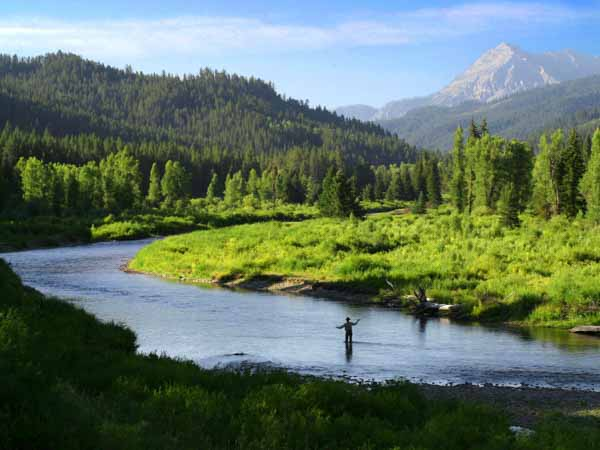 greys-river-wyoming-fishing-in-river