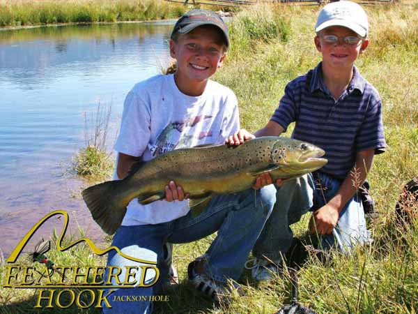 spring-creek-wyoming-fly-fishing-big-brown-trout