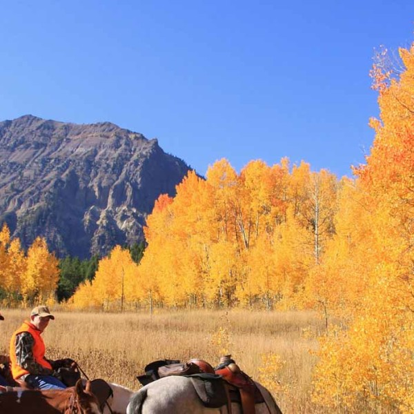 wyoming-fishing-pack-trips-horse-header